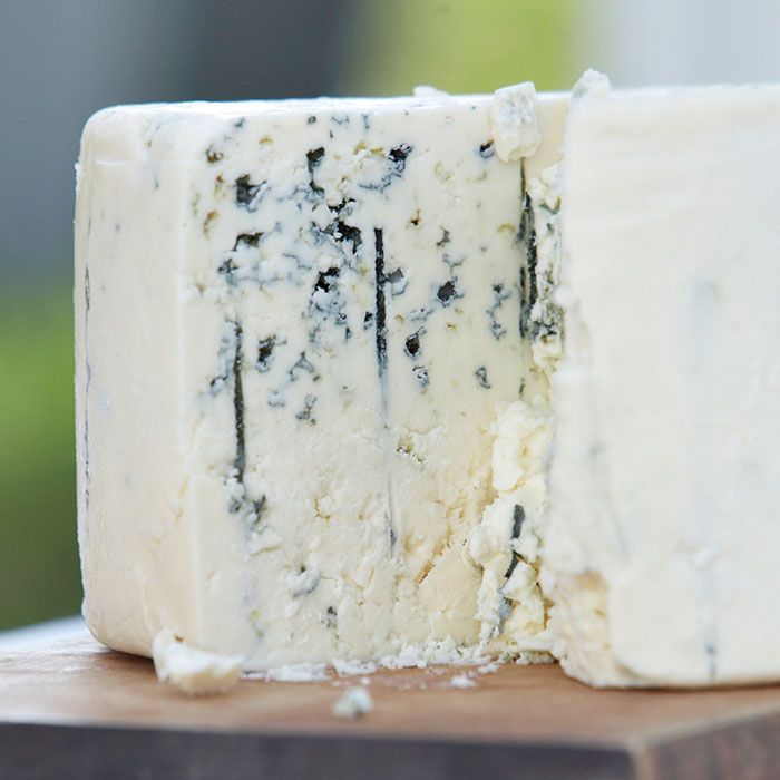 Cheese - Good Mold (if you like it)